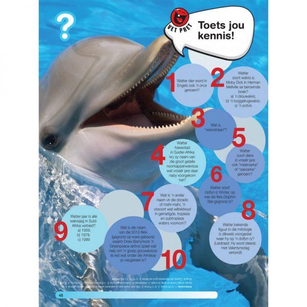 Hoezit: Walvisse en dolyne